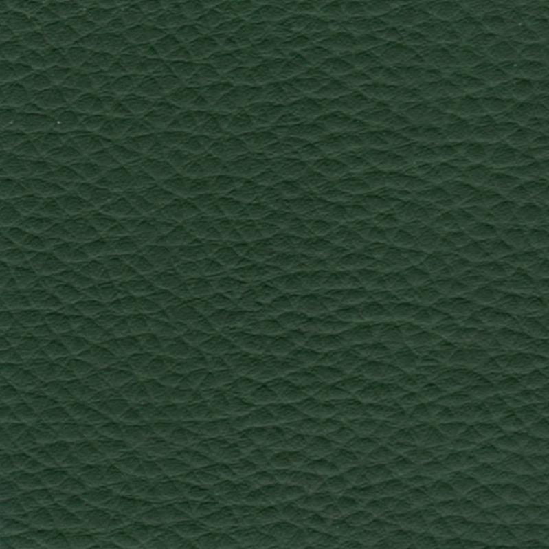 зеленый кожзам серии Стандарт